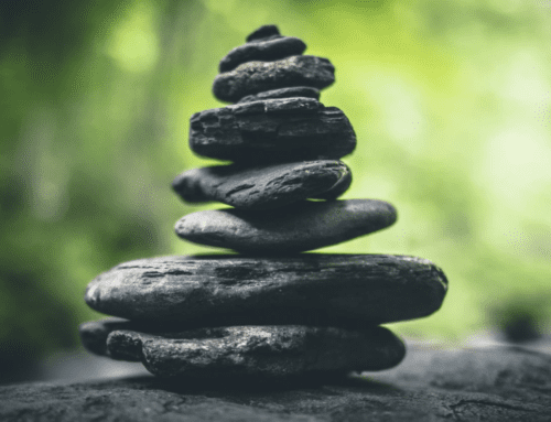 Supporting Organizational Stability During the Covid-19 Crisis